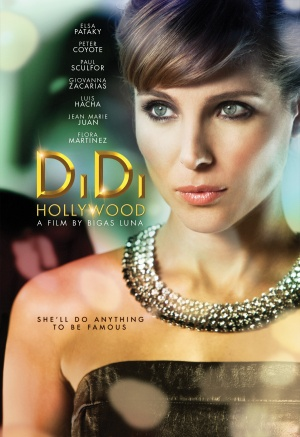 DiDi Hollywood poster